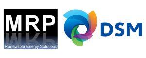 MRP consultancy for Royal DSM